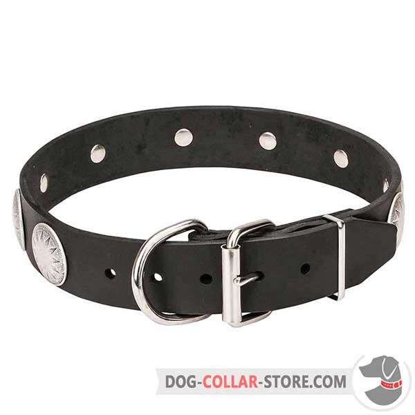 Dog Collar with Belt Buckle for Easy put on