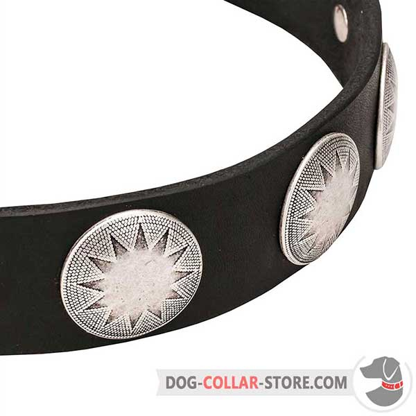 Dog collar with star plates