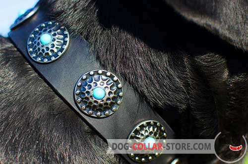 Solid Circles With Blue Stones On Leather Dog Collar