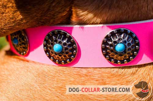 Rustless Circles With Blue Stones On Pink Leather Dog Collar