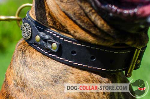 Fabulous Braided Decoration on Padded Leather Dog Collar