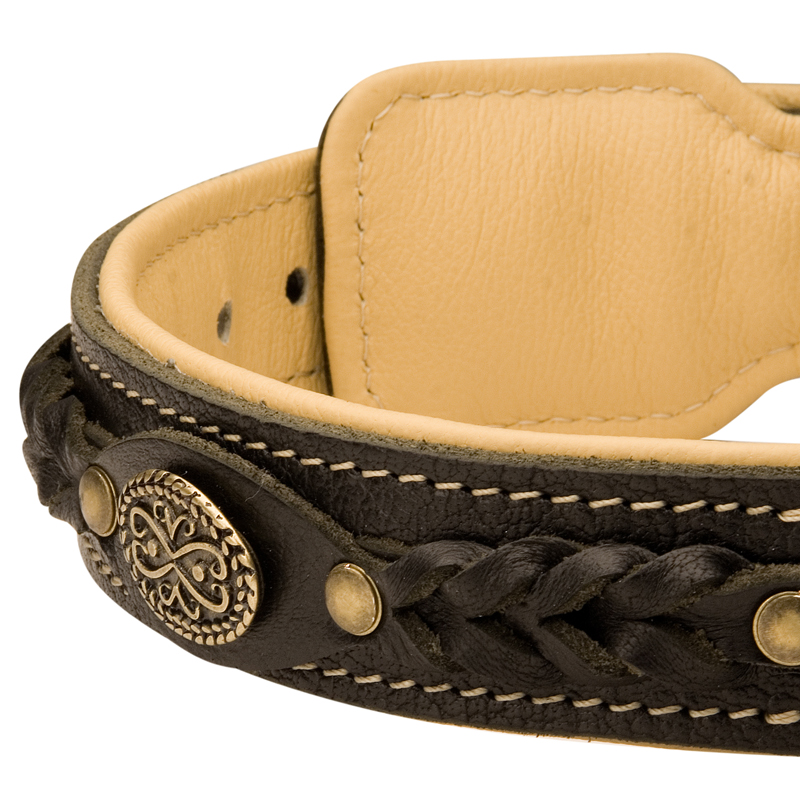 Decorations On Fashion Training Leather Dog Collar