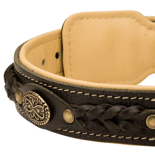Decorations on Fashion Training Leather Dog Collar Nappa Padded for Extra Comfort