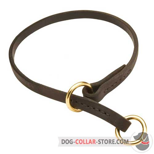 Training Leather Dog Choke Collar