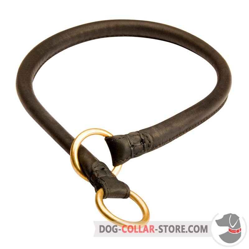 choke collar dog