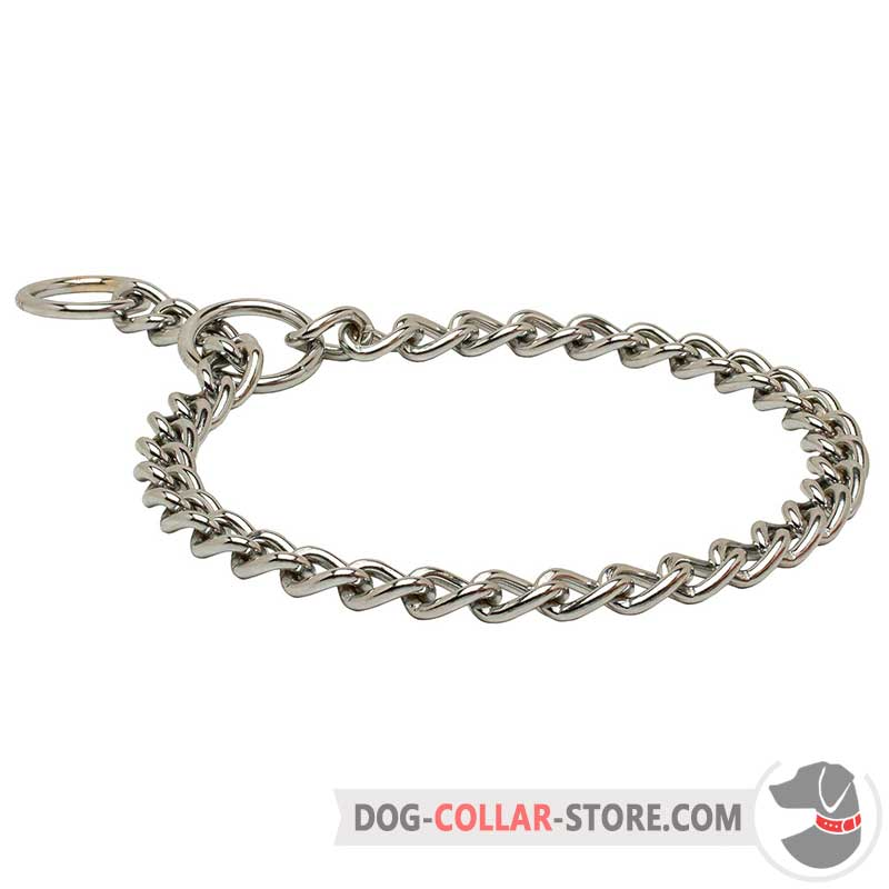Buy Durable Steel Chrome Plated Choke Dog Collar   Training