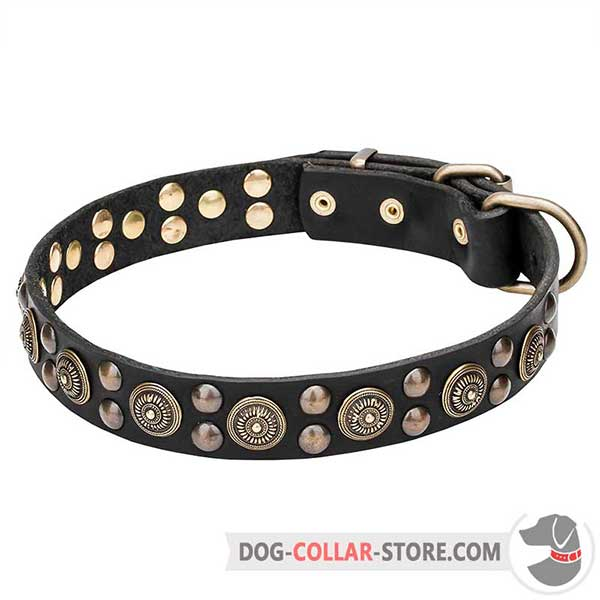 Leather Collar for walking, high quality