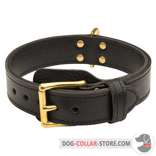 Strong Adjustable Leather Dog Collar for Regular Training with Buckle