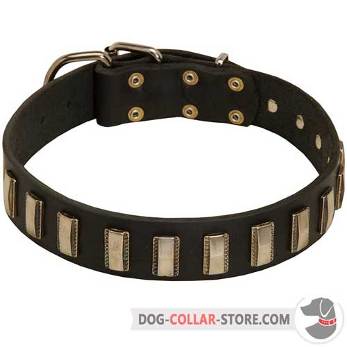 Adjustable Leather Dog Collar Decorated with Vertical Nickel Plates