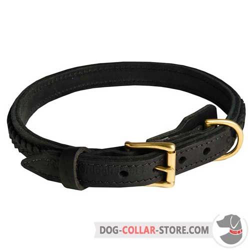 Braided Leather Dog Collar for Walking in Style