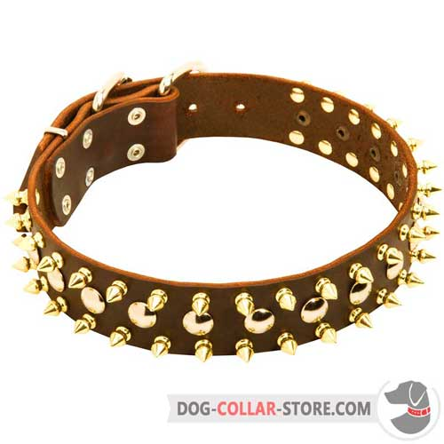 Studded and Spiked Leather Dog Collar for Walking