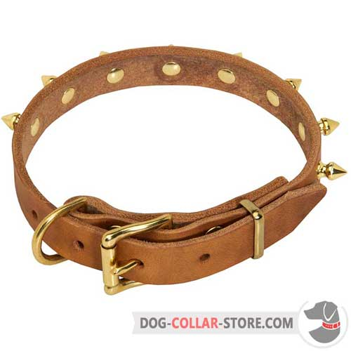 Leather Dog Collar with Brass-Plated Bronze Color Buckle
