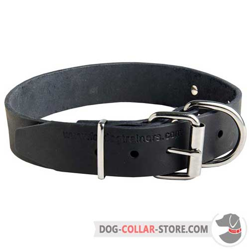 Classic Design Leather Dog Collar with Rust Resistant Nickel Plated Fittings