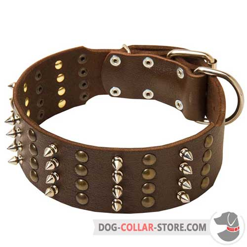 Decorated Leather Dog Collar with Nickel D-Ring