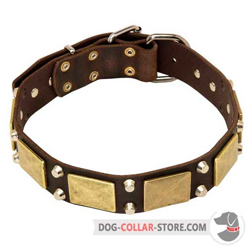 Designer Leather Dog Collar with Stylish Plates and Studs