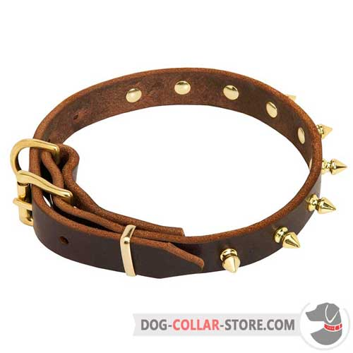 Leather Dog Collar with Unique Spiked Decorations