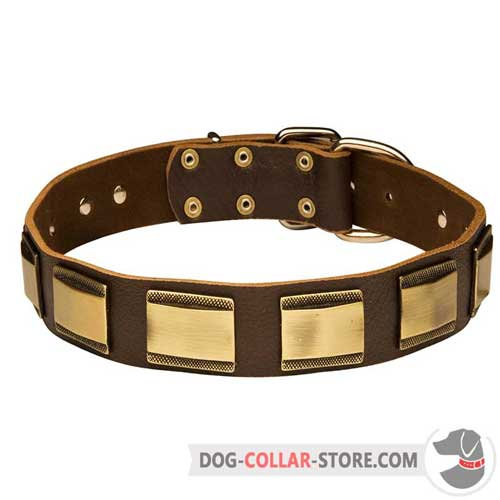 Decorative Fashion Leather Dog Collar with Plates
