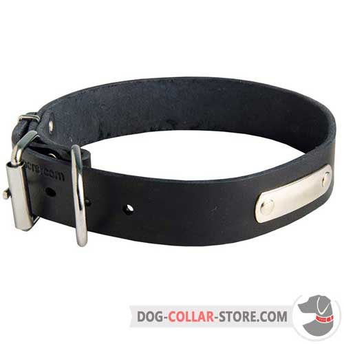 Elegant Handcrafted Leather Dog Collar with ID Tag