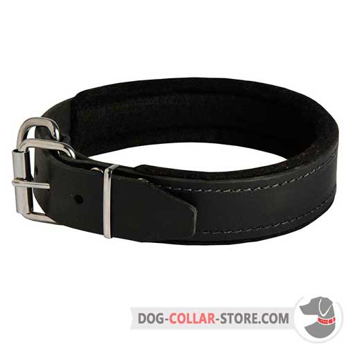 Classic Design Leather Dog Collar Padded with Soft Felt