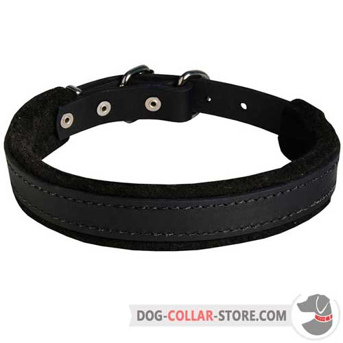 Felt Padded Leather Dog Collar for Intense Training