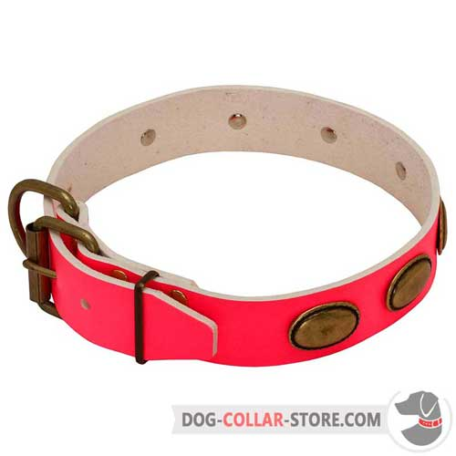 Pink Leather Dog Collar Adjustable with Brass Fittings