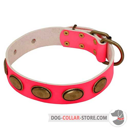 Pink Leather Dog Collar with Vintage Oval Brass Plates