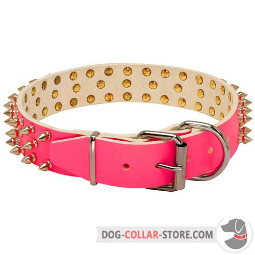 Leather Dog Collar Spiked Design