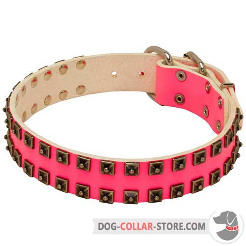 Pink Leather Dog Collar for Regular Walking