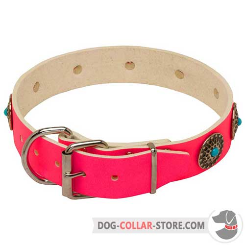 Pink Leather Dog Collar with Strong Nickel Plated Fittings