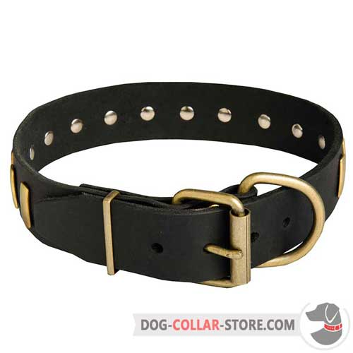 Plated Leather Dog Collar with Reliable Brass Hardware