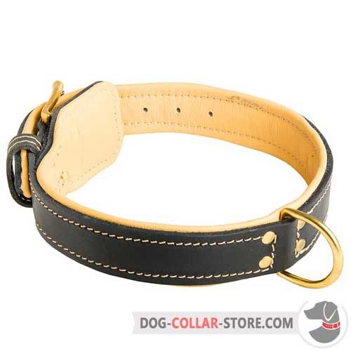 Royal Wide Leather Dog Collar Padded with Nappa