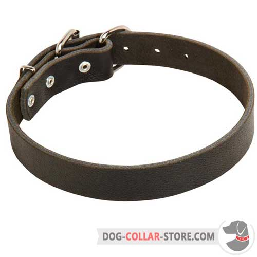 Classic Leather Dog Collar for Training and Walking
