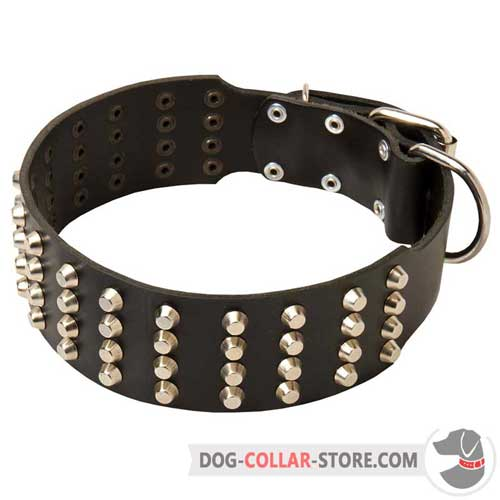 Leather Dog Collar Studded Design