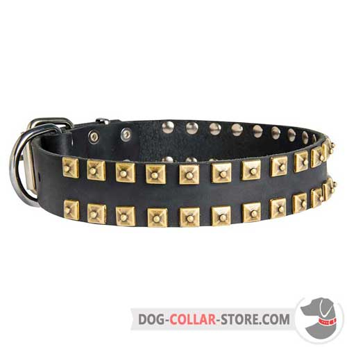 Hand Decorated Leather Dog Collar for Regular Training