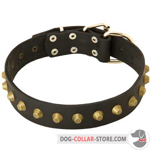 Fashion Studded Leather Dog Collar for Comfy Walking