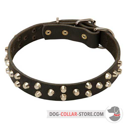 Studded Leather Dog Collar For Easy Walking and Training