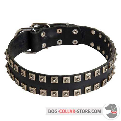 Hand Decorated Leather Dog Collar for Walking