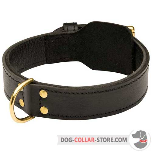 Strong Training Leather Dog Collar with Fur Protection Plate