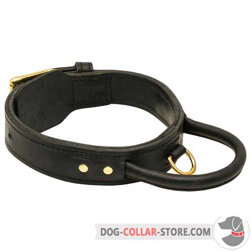 Two Ply Leather Dog Collar With Handle for Training Sessions