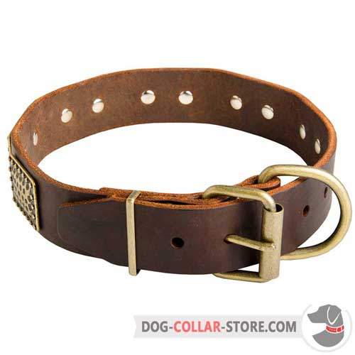 Vintage Leather Dog Collar with Rust Proof Brass Hardware