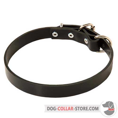 Classic Designer Leather Dog Collar for Comfortable Walking