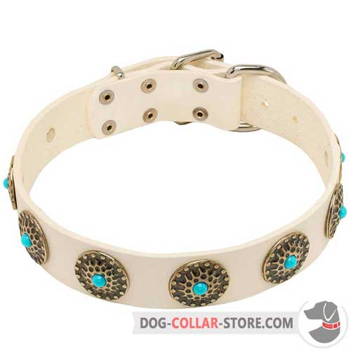 White Leather Dog Collar for Walking
