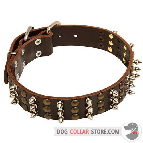 Decorated Leather Dog Collar for Safe Walking