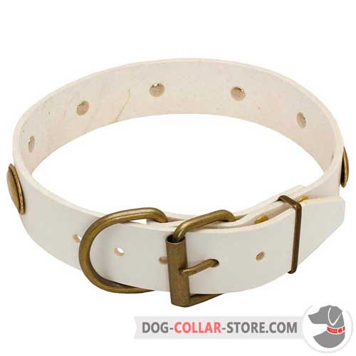 White Leather Dog Collar Equipped with Brass Fittings