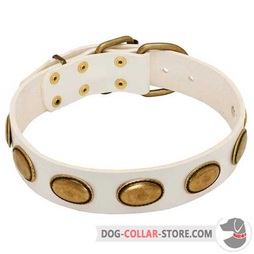 White Leather Dog Collar with Vintage Oval Brass Plates