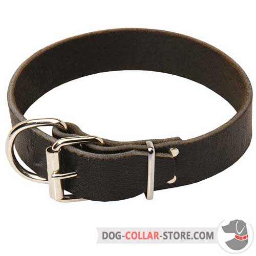 Wide Leather Dog Collar with Strong Nickel Plated Buckle