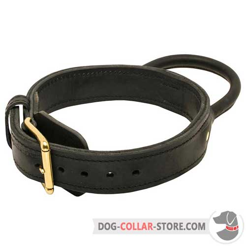Training Leather Dog Collar With Reliable Brass-Plated Buckle