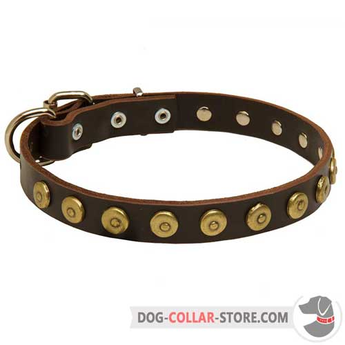 Fashion Leather Dog Collar with Goldish Brass Dotted Circles