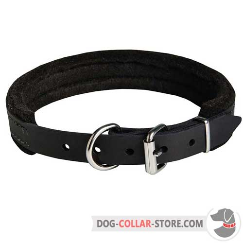 Padded Leather Dog Collar with Reliable Nickel Plated Hardware