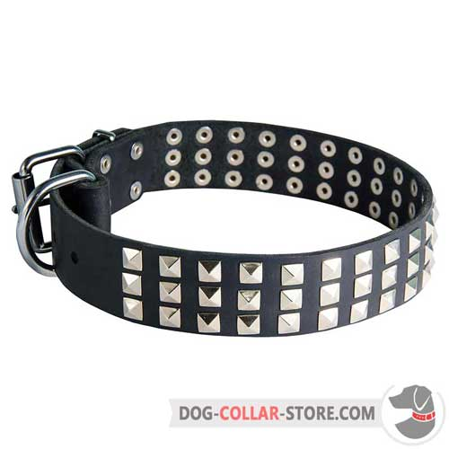 Leather Dog Collar Adorned with Nickel Plated Pyramids